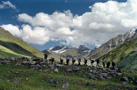Spiti and Himachal Tour